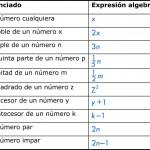 Ejemplos de lenguaje algebraico