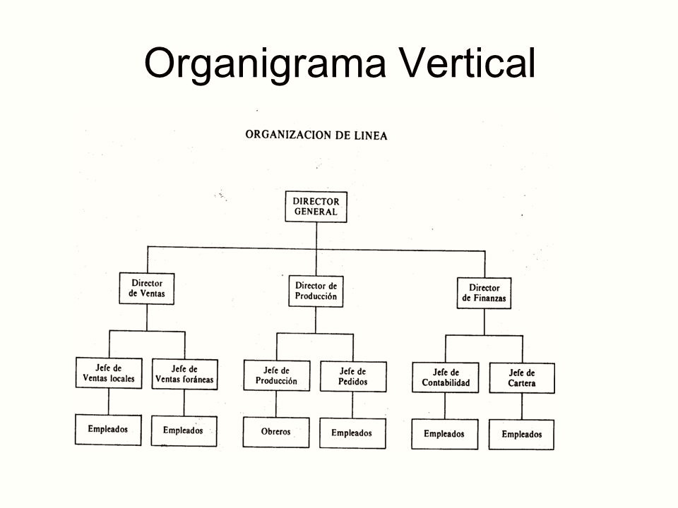5 Ejemplos De Organigramas
