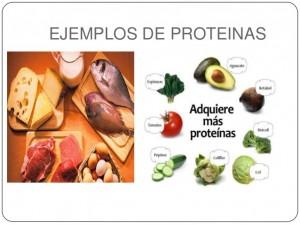 Ejemplos de proteinas