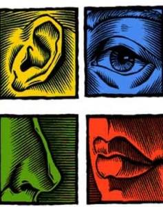 Ejemplos de imágenes sensoriales