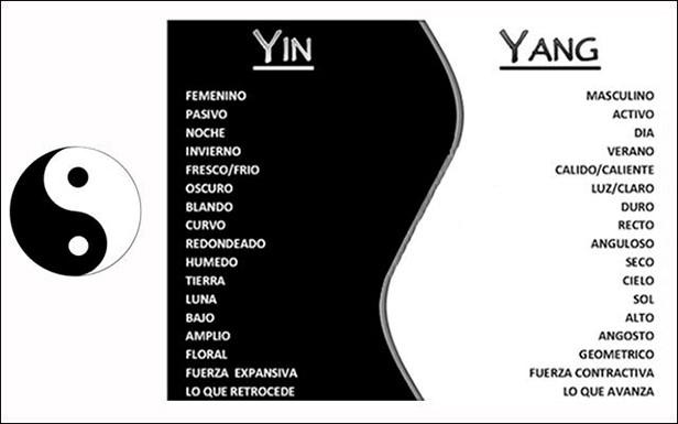 Ejemplos de Yin y Yang