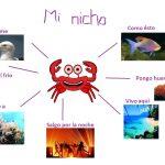 Ejemplos de nicho ecológico