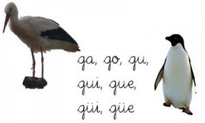 ejemplos de palabras con diéresis