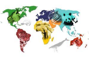 Ejemplos de Animales en peligro de extinción