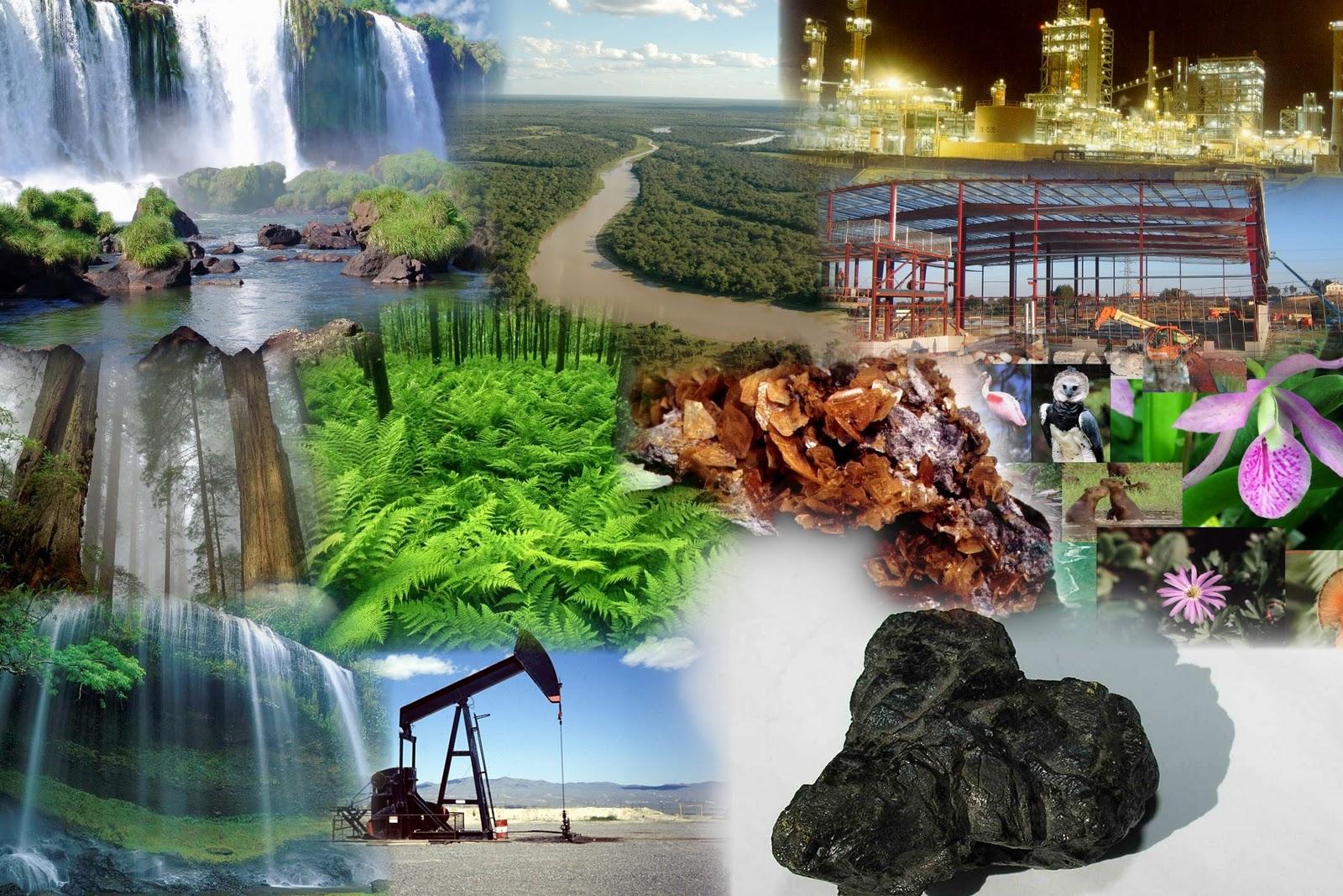 Los recursos naturales se dividen en: Renovables - No renovables - inagotables. Los Recursos Naturales Renovables. Los recursos naturales renovables son aquellos que, con los cuidados adecuados, pueden mantenerse e incluso aumentar. Los principales recursos renovables son las .