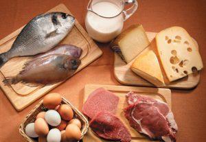 ejemplos alimentos de origen animal