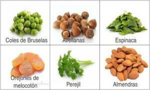 ejemplos de alimentos de origen vegetal